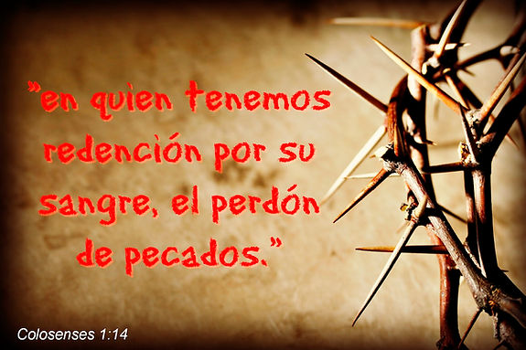www.salvosporgracia.com