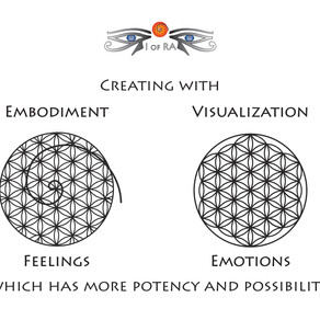 Visualisation vs Embodiment  Emotion vs Feeling