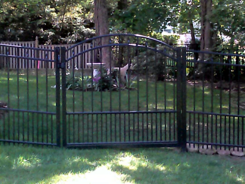 Puppy Picket Arched Gate