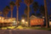 夜 表駐車場から看板 ヤシの木.jpg