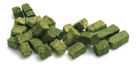 Alfalfa Cubes.jpg