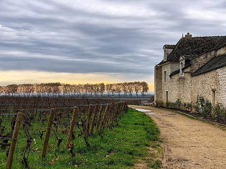 Burgundy region with friends.jpg