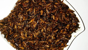 Esunsun: A Tale of Edible Insects