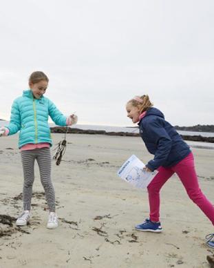 coastal cleanups.png