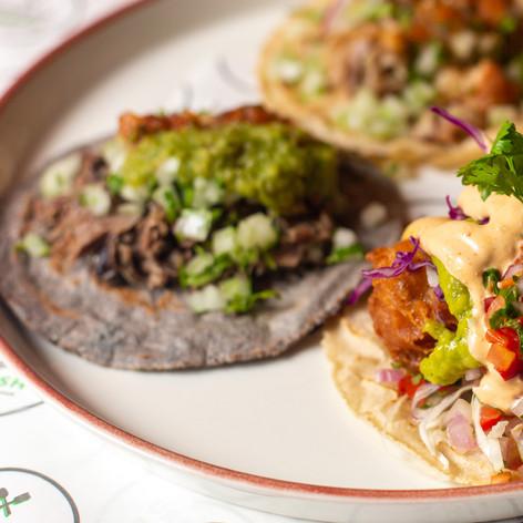 Taco Wednesday