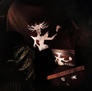 Package (CD, T-Shirt, bracelet, badge)