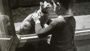 De la amistad como modo de vida. Entrevista a Michel Foucault