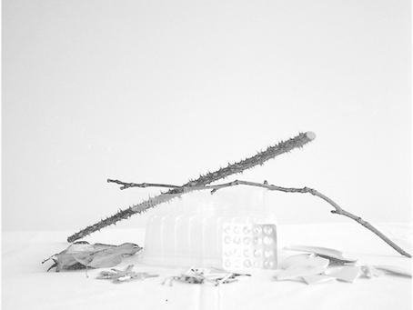 Largo y difícil es el camino que conduce a ella / Susana Thenon