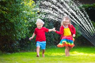 Spectra Summer Bucket List