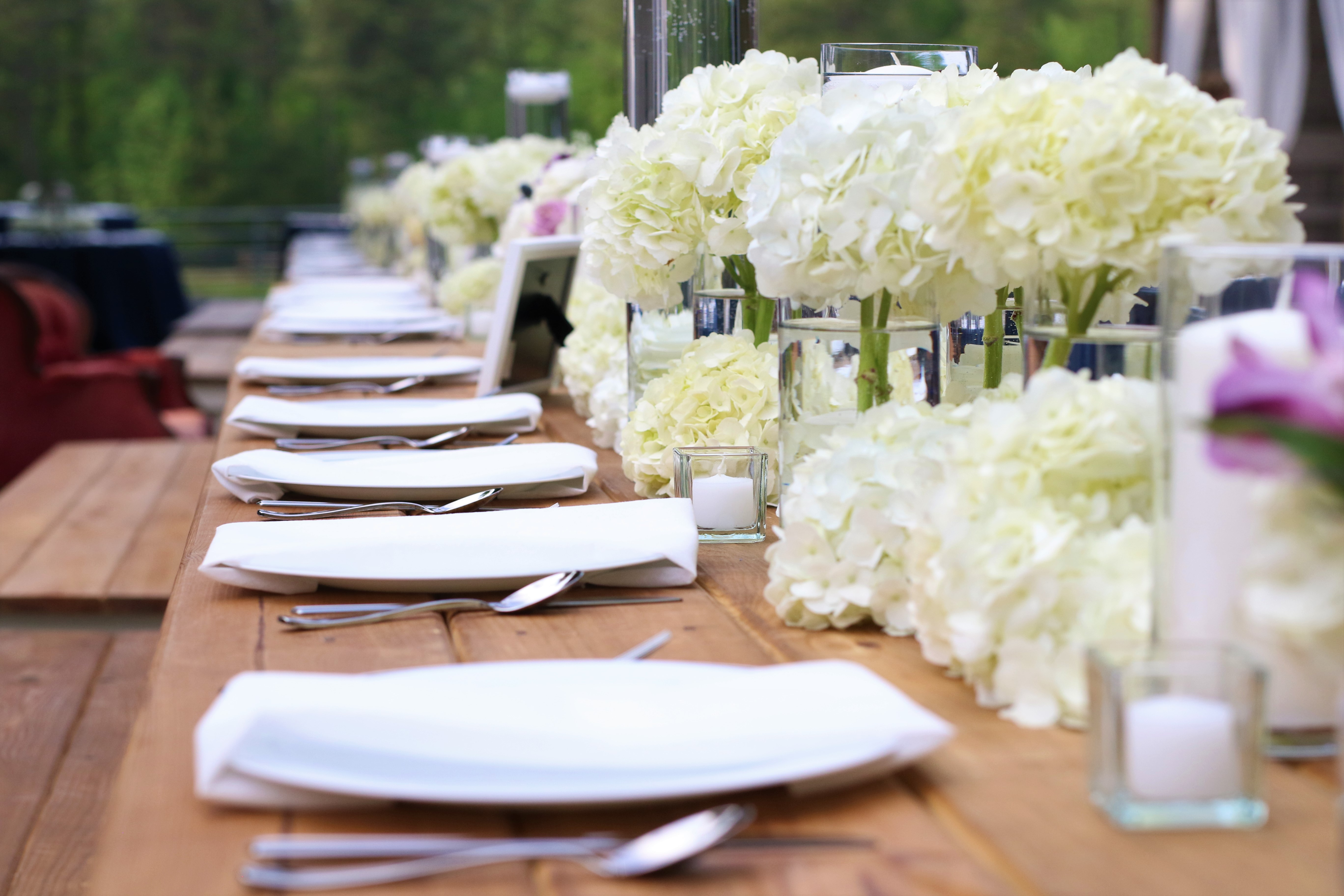 Southern Petals Inc | Stacey K Photo