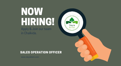Sales Operation Officer