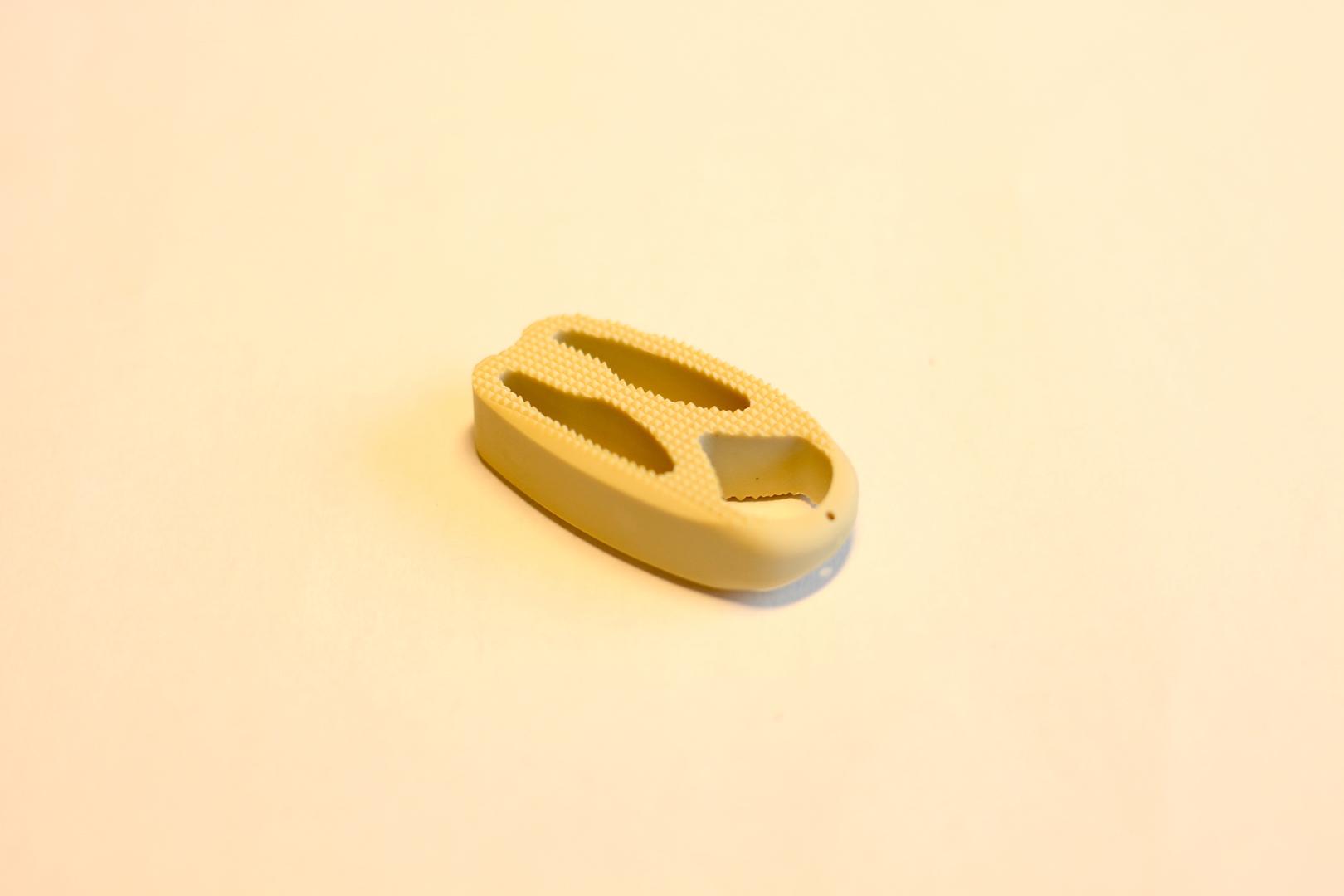 implant rachis