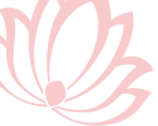 lotus rose philomene