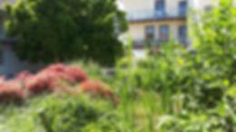 château_jardin_2.jpg
