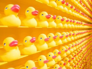 wall of rubber ducks in rows