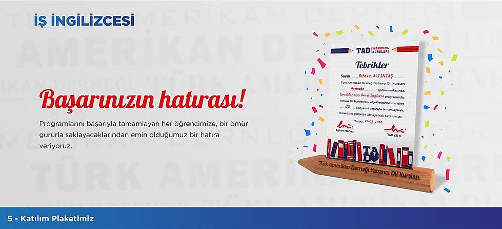 Türk Amerikan Derneği - İş İngilizcesi