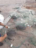 tartarugas verdes porto imbituba 2072018