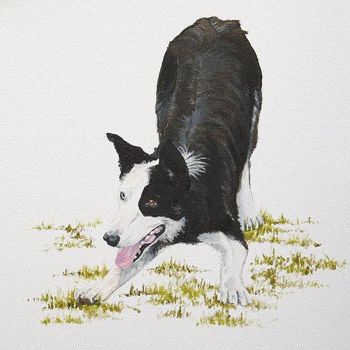 'Collie dog', Bodenham Arboretum, Worcestershire