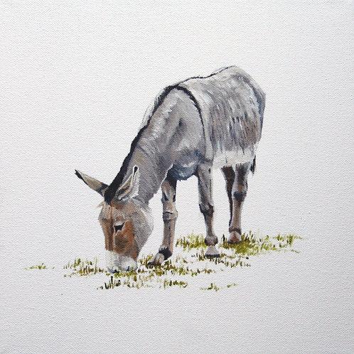 'Donkey', Bodenham Arboretum, Worcestershire