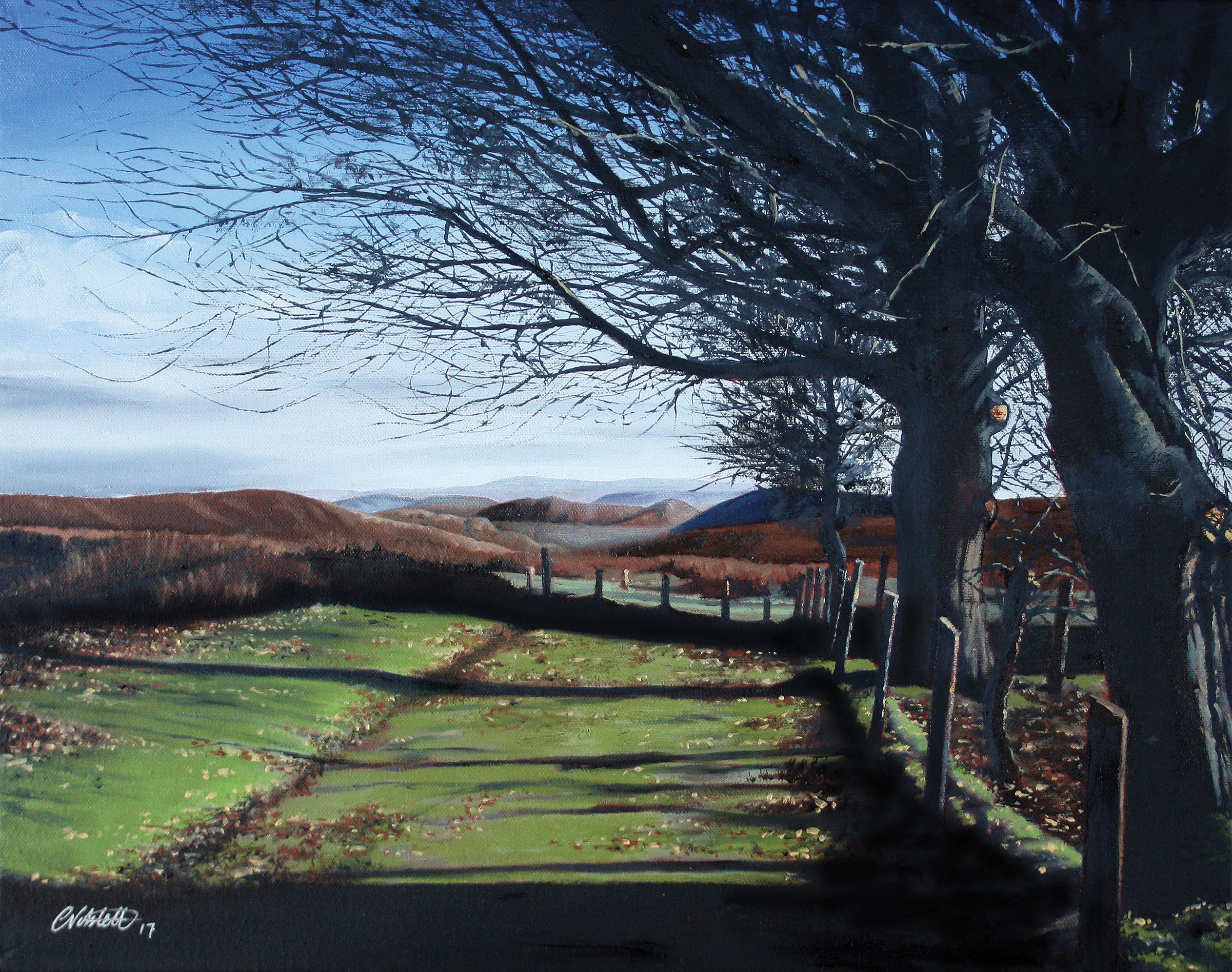 Winter-sun,The Long Mynd, Shropshire