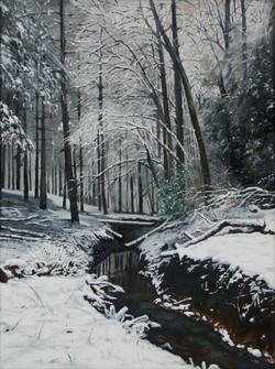 Bodenham-Wood-snowy-stream