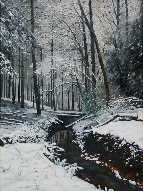 Snow in Bodenham Wood, Bodenham Arboretum, Worcestershire