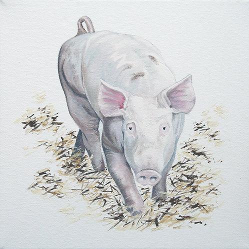 'Pig', Bodenham Arboretum, Worcestershire