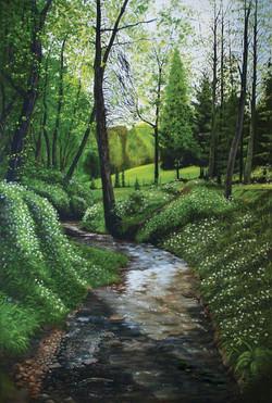 Bodenham-Wood