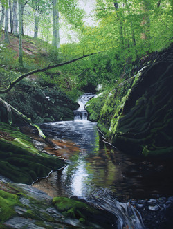 Secluded waterfall, Nant Methan