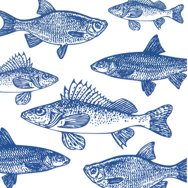 Graphic Fishes marine 33x33cm