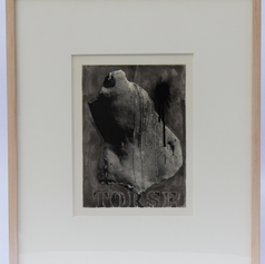 34. Torse, 1976 Torse 9 3/8 x 7 in. Photo-screen squeegeed onto plate, lift-ground aquatint, and open-bite The torso motif provides both a beginning and an end to Fizzle 3. Torse is by far the most illusionistic image of all the Johns' prints in this exhibition. With the application of a photoscreen stencil, Johns was able to literally reproduce the wax cast from which it was derived.