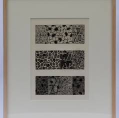 24. Three Panels (ABCD), (BCDA), (CDAB), 1976 Trois jurys 2 13/16 x 7 3/8 in. Etching, soft-ground, lift-ground aquatint, and burnishing Four years prior to Foirades/Fizzles, Johns had completed his four-panel painting Untitled, 1972, on which he based his imagery for the collaboration with Samuel Beckett. The four panels (three of four illustrated here), each containing four sections of images: hatching, flagstones (a), flagstones (b), and casts, are rotated one panel or section in each succeeding panel. The second panel [flagstones (a), flagstones (b), casts, and hatching] is rotated in the third panel again [flagstones (b), casts, hatching, and finally, flagstones (b)].