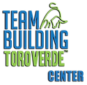 Logo TVTC 1 low.png