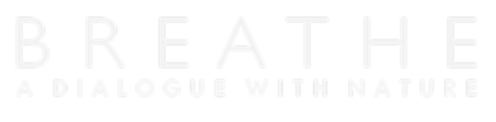 Logo Breathe Blanco.png