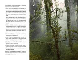 Respirar_page-0005