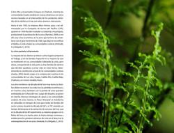 Respirar_page-0022