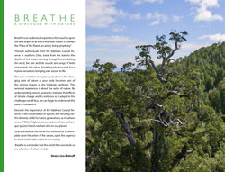 Breathe_page-0004