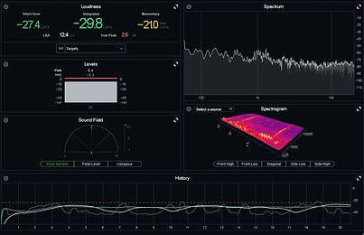 monitores_de_nivel_jorobada_motor.jpg