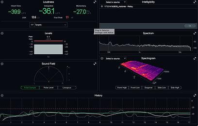monitores_de_nivel_jorobada_motor_.jpg