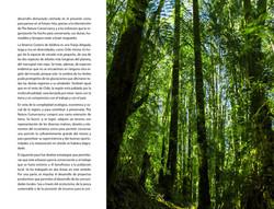Respirar_page-0061