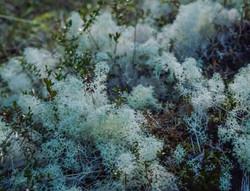 Breathe_page-0082