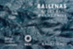 Ballenas2.jpg