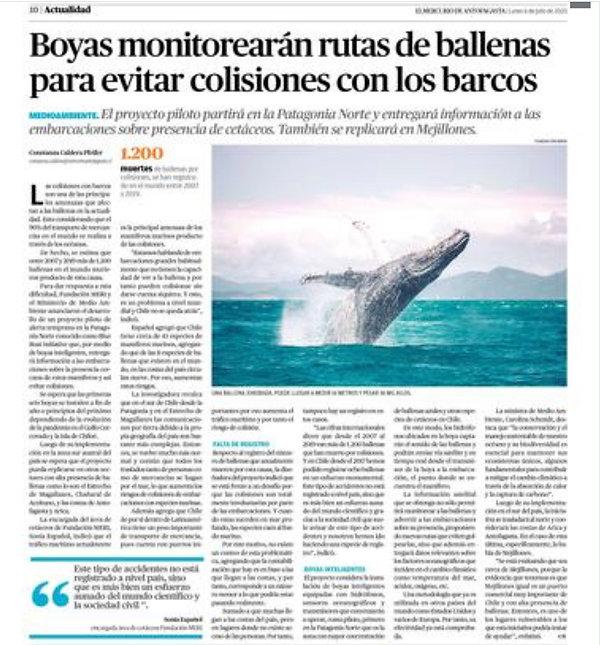 Boyas_monitorearan_Rutas_de_Ballenas_par
