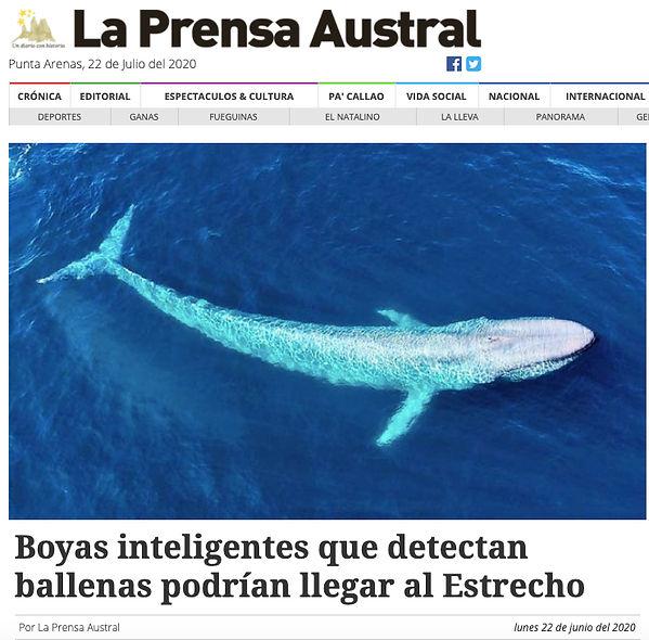 Boyas_Inteligentes_que_Detectan_Ballenas