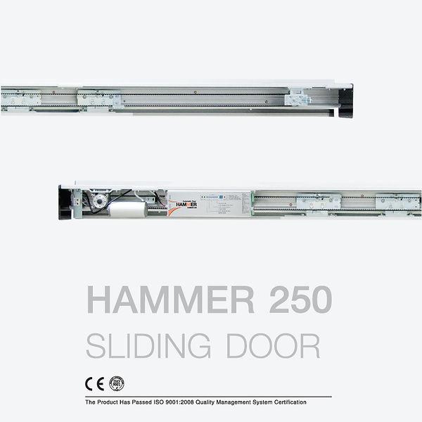 800x800 Hammer 250.jpg