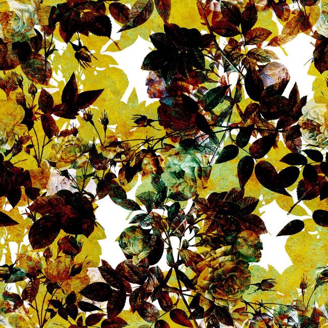 pattern_57-2 copy.jpg