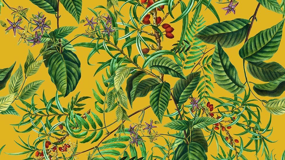Summer Exotic Garden