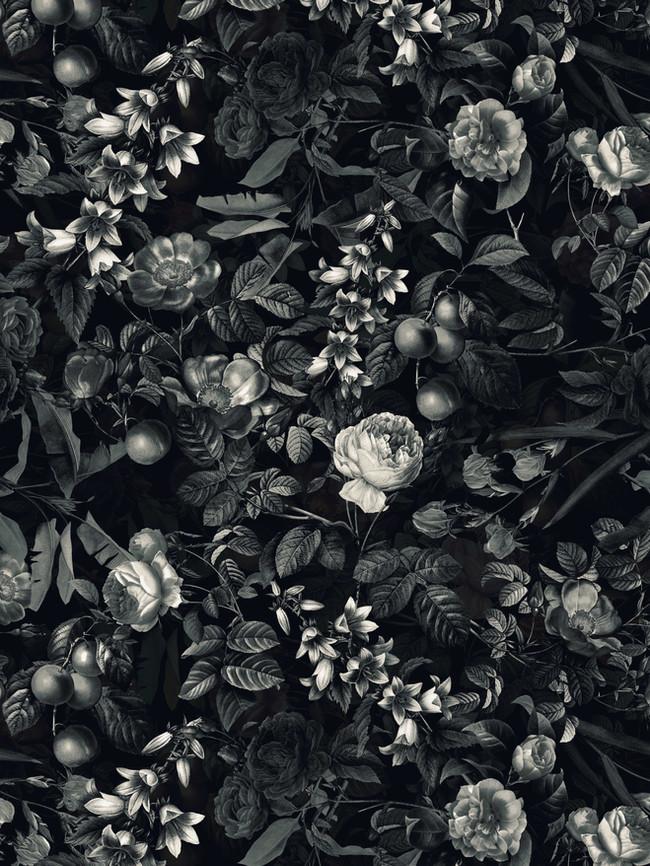 Black_white copy.jpg