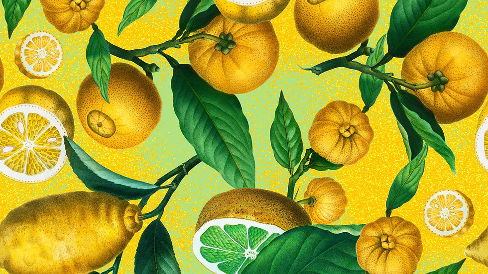 Citrus Ichangensis
