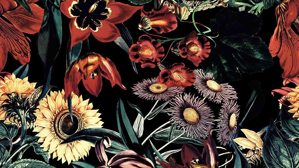 Night Garden XIII